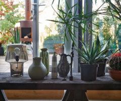 Decor tips: circondarsi di piante e fiori