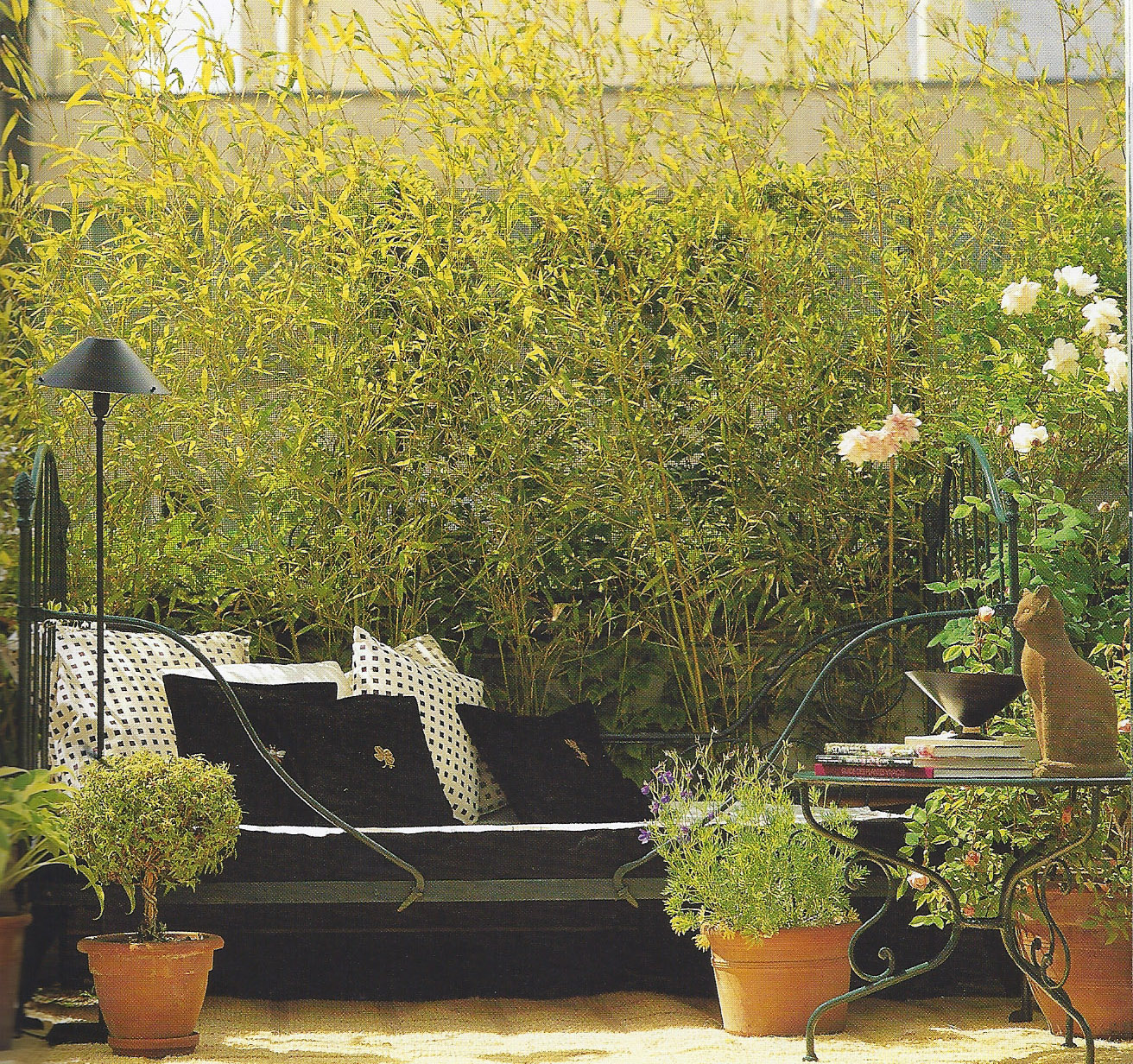 Big terrace_2