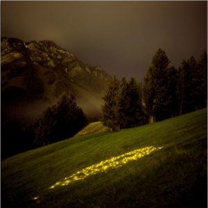 norquay yellow