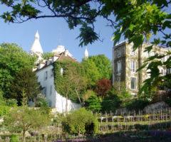 Sorprendente Parigi – Clos Montmartre