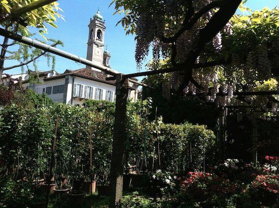 Vivaio Riva, Milano