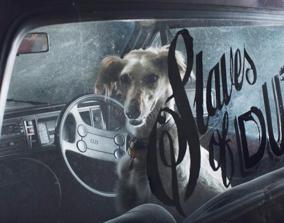Martin_usborne-dog_9