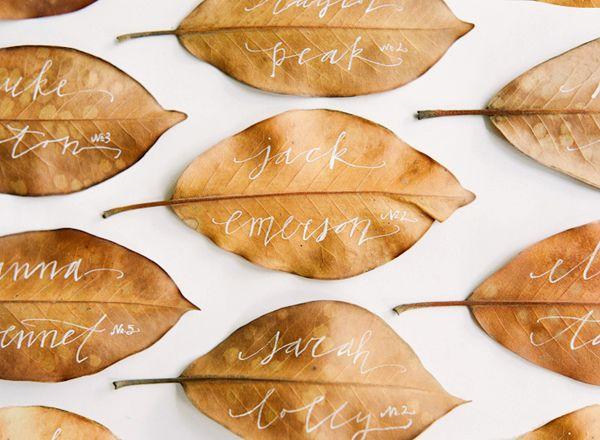 tavole d'autunno (1)