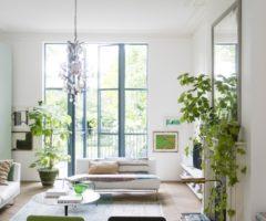 Una casa londinese luminosa e piena di piante