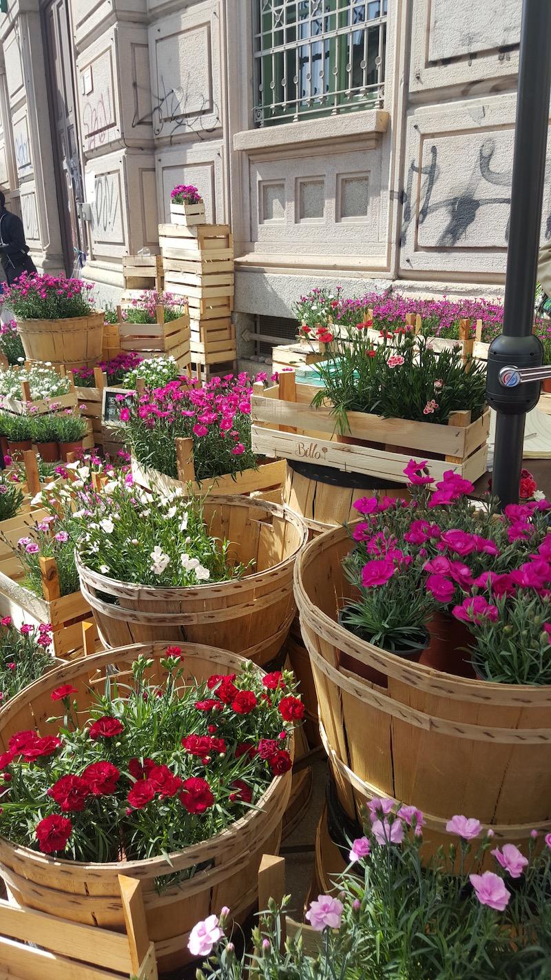 Primavera_Navigli