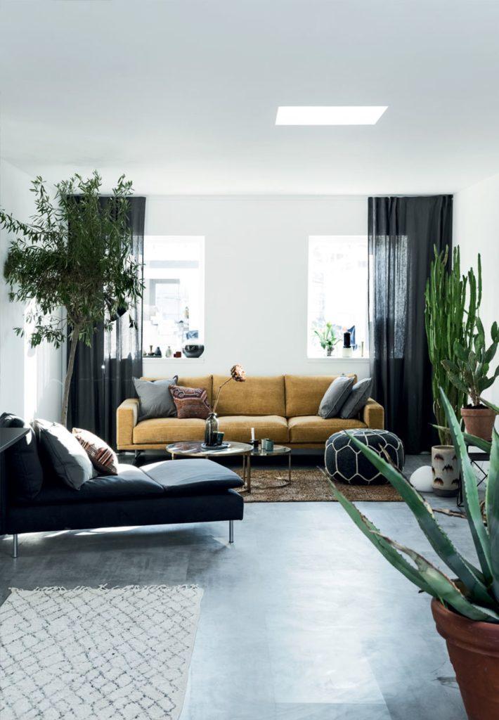 Un oasi piena di piante in Danimarca