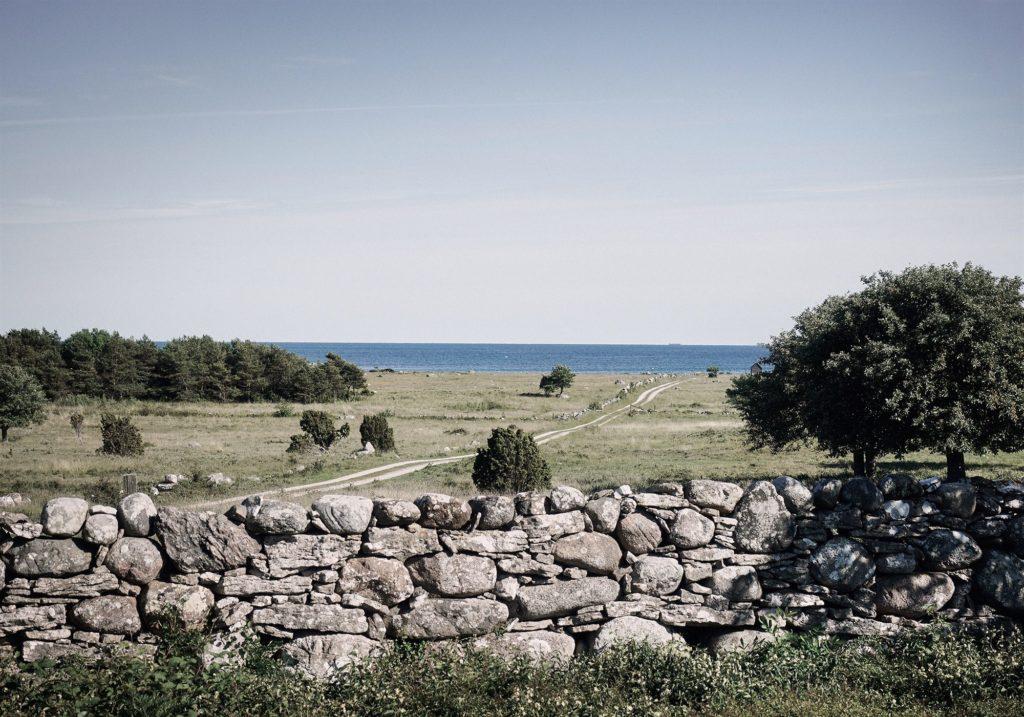 Gotland Hamra 7
