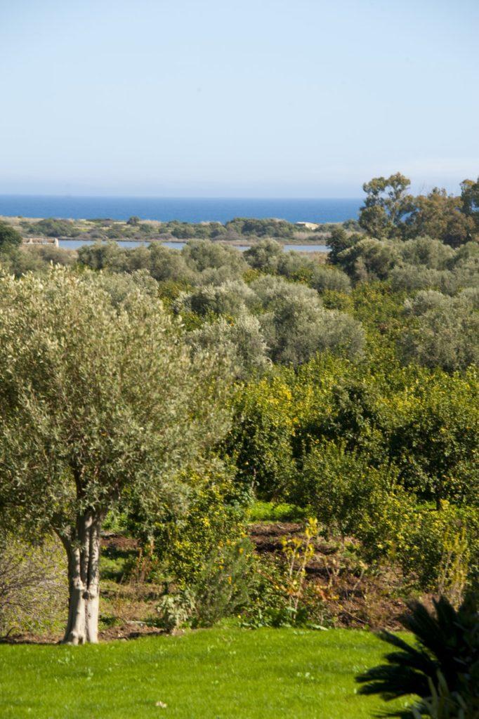 Sicilia Masseria Costanza 3