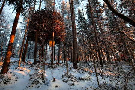Treehotel Sweden  3