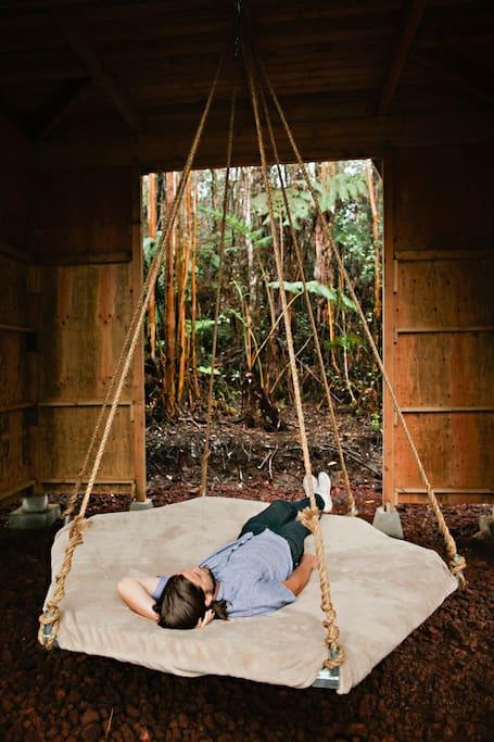 6 una casa sull'albero alle Hawaii