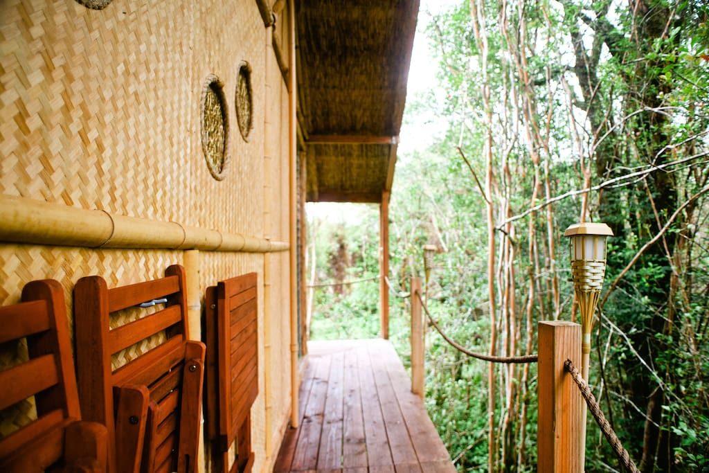 8 una casa sull'albero alle Hawaii