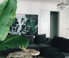 Decor Tips: Pollice verde e arredamento