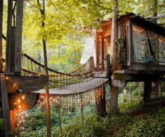Airbnb series: un'imperdibile casa sull'albero ad Atlanta