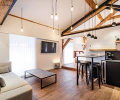 Airbnb series: travi a vista per un piccolo loft a Lione