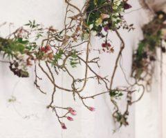 Go green: Pyrus Botanicals