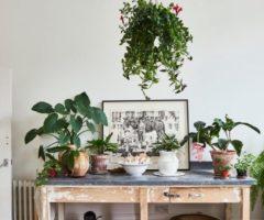 Go green: un'irresistibile casa bohémienne affacciata sul giardino