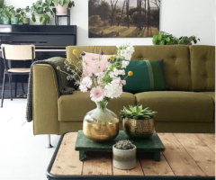 Spotlight on color: spazio all'adattabilità del verde
