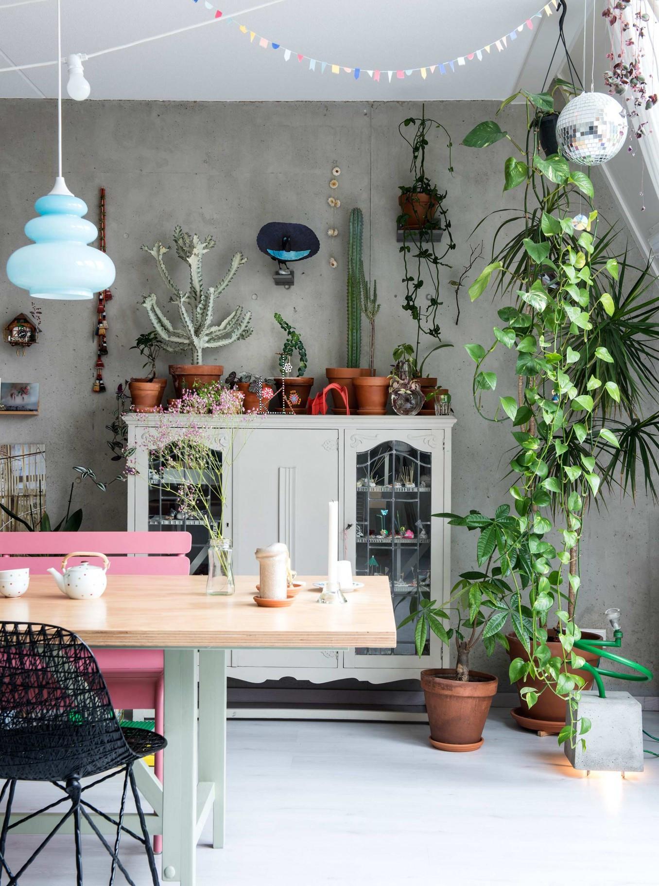 Interior inspiration una gioiosa casa piena di piante e - Casa piena di zanzare ...