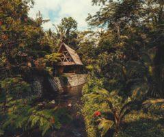 Airbnb series: una vacanza a contatto con la natura a Bali