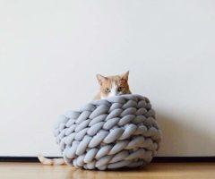 Special products: una cuccia per gatti dal design moderno e trendy