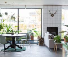 Get the look: una casa di famiglia piena di piante e luce