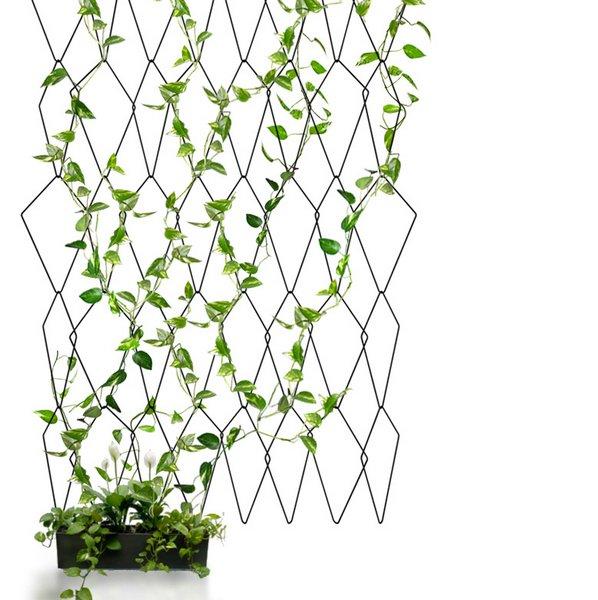 Go green: una parete verde in ogni angolo della casa