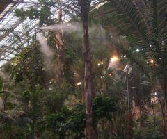 Go green: c'è una giungla in stazione