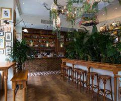 Go green: Mr Fogg's House of Botanical