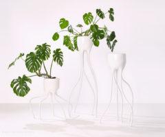 Special products: i vasi dalle forme sinuose e organiche di un designer olandese