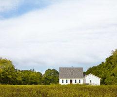 Countryside: bianco ottico per una fattoria tra verde e animali