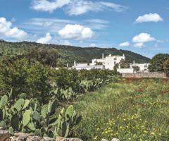 Masseria Le Carrube, un sogno tra mare e campagna