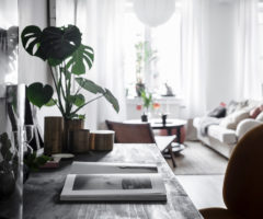 Interior Inspiration: un piccolo appartamento con una stanza vetrata